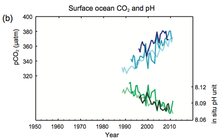 Ocean_acidification_medium