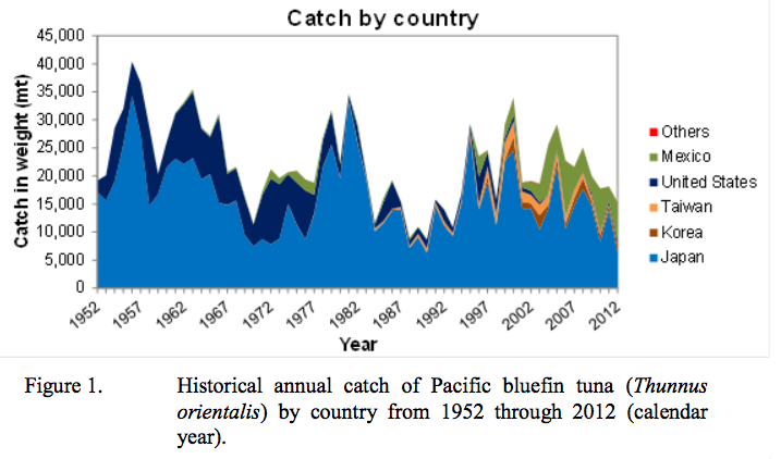 Pacific_bluefin_tuna_fishing