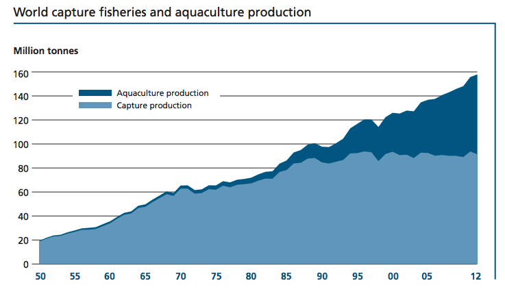 Fish_production