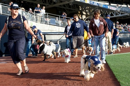 Petcoparkdogdays-448x298_medium