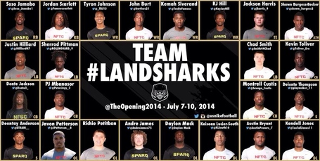 Landsharks_medium
