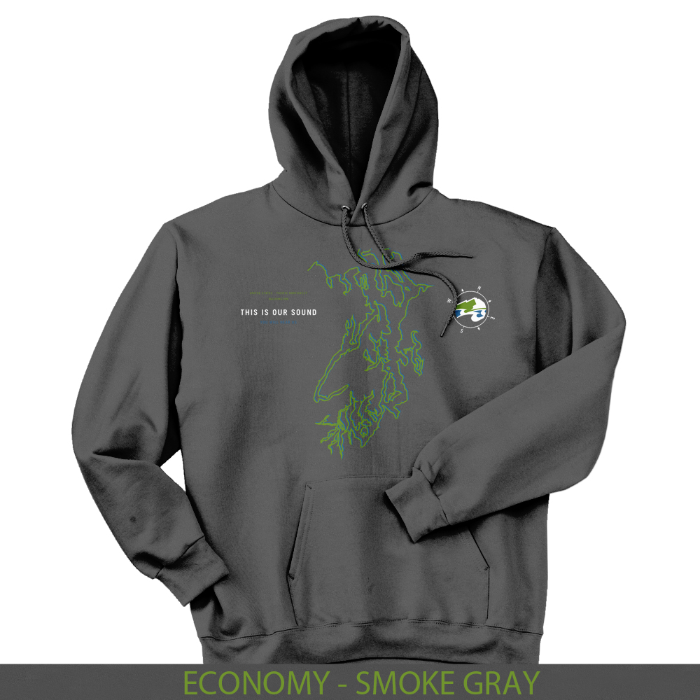 This Is Our Sound hoodie now available Sounder At Heart