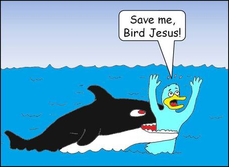 Save_me_bird_jesus_medium