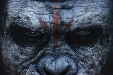 dawn of the planet of the apes (official poster crop)