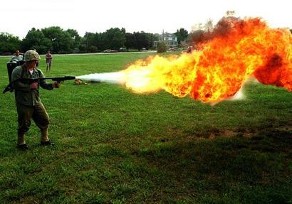 21585d1249007433-ground-bees-flamethrower