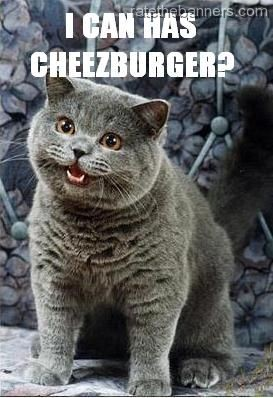 I-can-haz-cheezburger-cat-cheeseburger_big