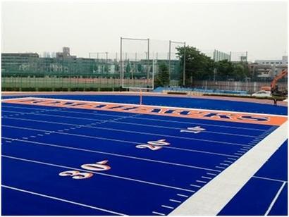Hosei_blue_field