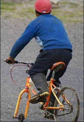 Fixed_bike