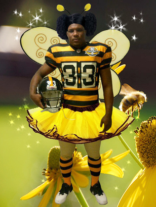Steelersnewunibee