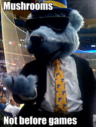 Blues_mascot_suit_close_mushrooms