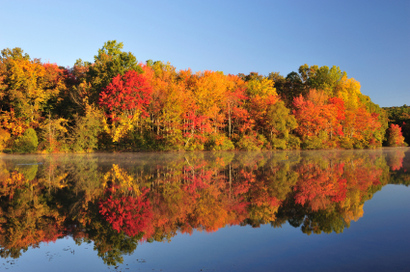 Fall-foliage-minnesota.jpg