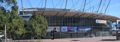 Acer_arena