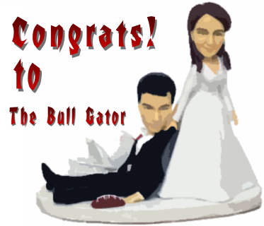 Bullgatormarriage