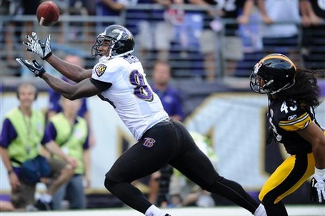 Dickson-ravens-ap_606_medium