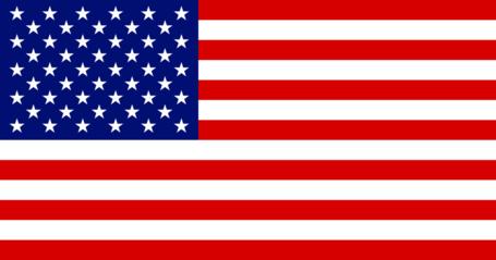 Flag_of_the_united_states_2_medium