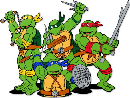 Teenage-mutant-ninja-turtles-in-hogwarts-colors_medium