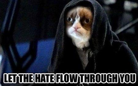 Meme_grumpy_cat_medium