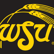 7693_wichita_state_shockers-alternate-1980