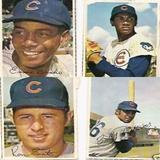 Cubs4_copy