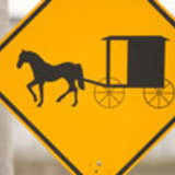 Amish_crossing