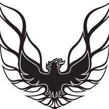 Vhp002-pontiac_firebird_1977-2__57185.1306995066.1280.1280