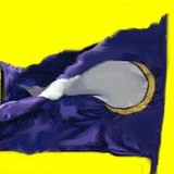 Viking_flag