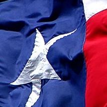 Texasflagicon