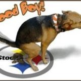 Dogpooon_steelers