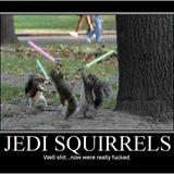 Jedisquirrels