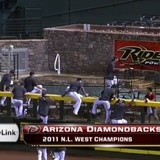 Arizona-diamondbacks-pool1-530x305