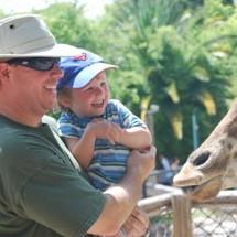 Dad_drew_giraffe