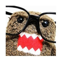 Hipster_domo