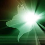 Grav_fox