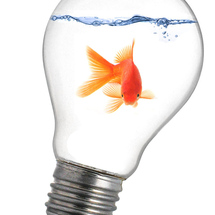 Goldfish_in_lightbulb_by_pawnile