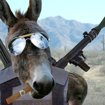 Attack-donkey