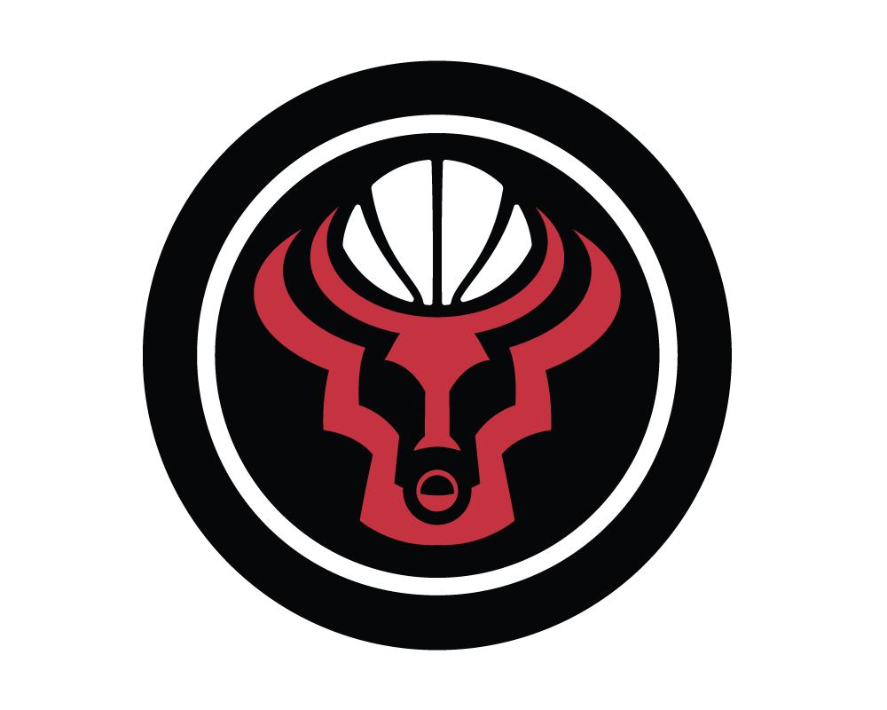 Blog a Bull