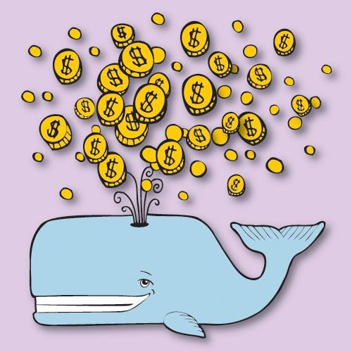 Whale%20Week%20Logo_500.jpeg