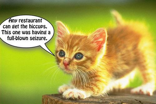 qwe2012_cat%299.jpg