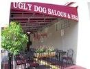 uglydog.jpeg