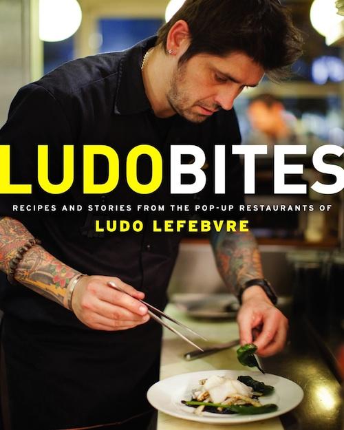 ludobites-book-cover-preview.jpg