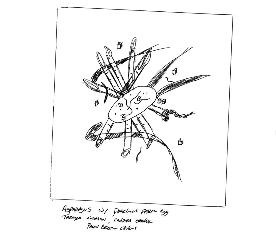 Asparagus-Sketch.jpg