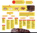 3Chocolate-1000x900%283584%29.jpg