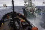 Sea_Shepherd_Bob_Barker_Japanese_Whaling.jpg