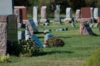 cemetery-yelp.jpg