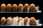 eggs-sniper-rifle-150.jpg