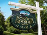 Border_Springs_1__2_.jpg