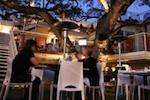 el-arbol-patio150.jpg