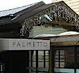 2008_04_palmetto%282%29.jpg