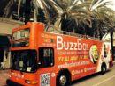BuzzBar%20bus%20SoBe.jpg