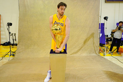 Bulls, Pau Gasol finalizing deal, according to report